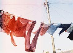clotheslines, photographi inspir, colors, laundri, digital photography, laundry, clothes lines, fabul clotheslin, art walls
