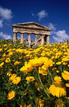 Greek temple ruins, Italy