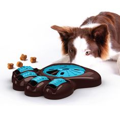 Aikou Interactive Dog Feeder | 2013 Gift Guide: Animal Lover | Organic Spa Magazine