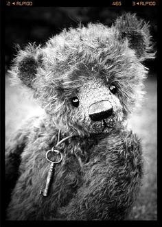 Teddy bear <3