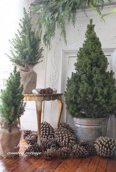 Use pine cones and small pine trees in burlap wrapped pots or metal buckets for a simple, natural look for your holiday decor.
