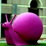 Magenta snail public art installation, Miami, Ca' d'Oro Gallery & Cracking Art Group