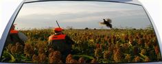 Pheasant Hunting with Pheasant in flight Rear Window Graphic Mural