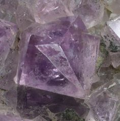 + Fluorite (twinned crystals) on Quartz
