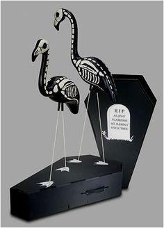 Flamingo Skeletons