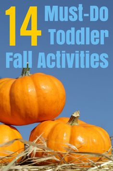 14 must-do toddler f