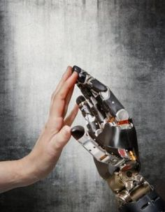 New research at the University of Chicago is laying the groundwork for touch-sensitive prosthetic limbs that one day could convey real-time ...