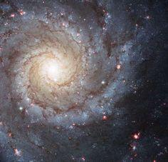 Spiral Galaxy M74 (Hubble)