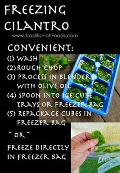 Freeze cilantro! @June Kuiper Kuiper mcintyre