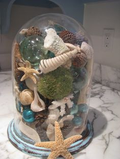 Diy cloche with sea shells #Glass #Craft and #Ideas