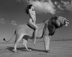 Lion Zion !