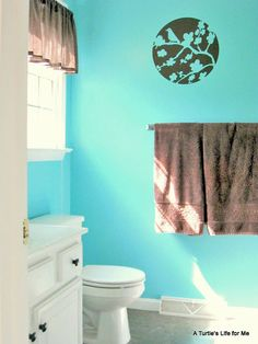 A Turtle's Life for Me: Master Bathroom Reveal