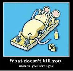 AWESOME fit, laugh, funni, stronger, kill, joke, inspir, quot, feelings