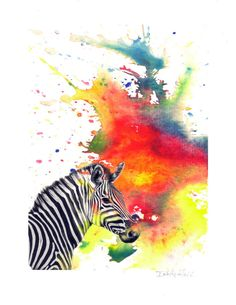 Zebra in a Splash of Color Watercolor Painting Fine by idillard, $20.00