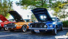 1969 Mustangs