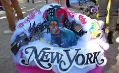 Guess what Frida's costume is? At New York's best Halloween dog parade in Tompkins Square Park NYC http://budgettravel.com/slideshow/americas-weirdest-and-cutest-parade,47636/