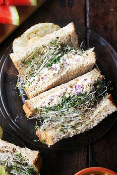 tuna, salmon or smoked trout salad sandwich with sprouts on super soft sandwich bread