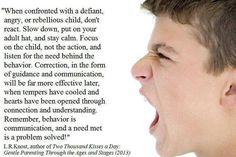 Handling challenging behavior at meetings.