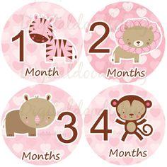 12 baby month stickers girl jungle safari animals pink monthly onesie stickers (77safari) cute monkey zebra lion giraffe leopard hearts age. $9.00, via Etsy.
