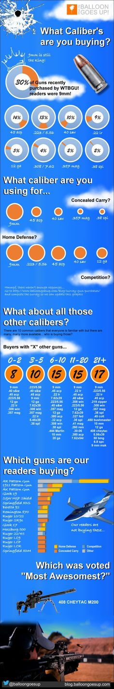 Ammo caliber purchase overview infographic