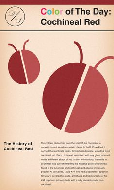 Today's color history fact is about COCHINEAL RED, which has an interesting tie to Pope Paul II #color