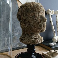 A Head Above - For a haunting silhouette, use hot glue to cover a foam wig head with moss