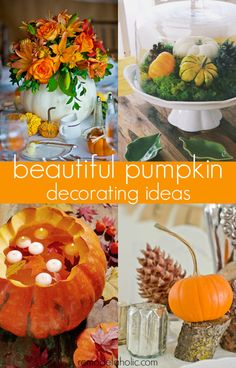 Pumpkins are one of