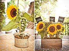 Pretty sunflowers.