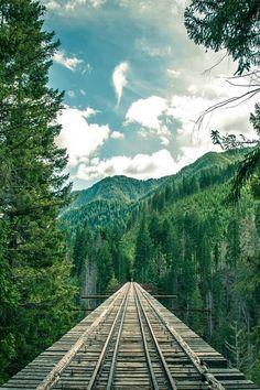 Mountain Rail, The Cascades, Washington