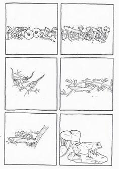 du_t_tard___la_grenouille