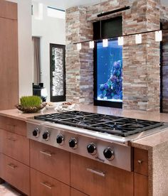 Aquarium Kitchen Design Ideas