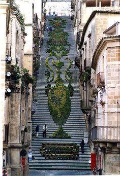La Scala Infiorata de Caltagirone La Scala Infiorata se celebra del 8 de mayo al 2 de junio en la ciudad de Caltagirone (Italia), en honor de la Virgen de Conadomini. Durante estas fechas los 142 peldaños, recubiertos de azulejos, de la escalinata de Santa María del Monte se adorna con miles de macetas con plantas y flores. Estas son algunas de las magníficas composiciones que se han realizado en Caltagirone en los últimos años.