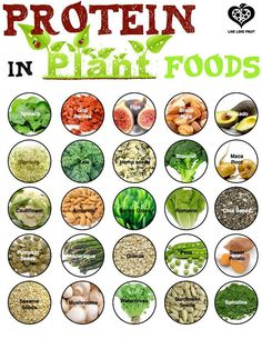 """More Protein sources ❥➥❥ Chia seeds, Hemp seeds, Sunflower seeds, Spirulina, Quinoa, Sesame seeds, Pumpkin seeds, Mushrooms, Barley grass...  How many of these 24 foods do YOU like?  Printable version: http://livelovefruit.com/2013/04/plant-protein/   ♥Like✔""""Share""""✔Tag✔Comment✔Repost✔God Bless♥  ℒℴѵℯ / Thanks ➸ Live Love Fruit http://livelovefruit.com/2013/04/plant-protein/  Share.Like.Comment.Tag.EMPOWERment ♡ ♥ ♡ pinned with Pinvolve - pinvolve.co"""