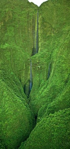 """Honokohau Falls """"Photographed from an open helicopter (doors off) near the summit of Puu Kukui in the West Maui Mountains"""" of Maui, Hawaii • photo: Royce Bair on Flickr"""