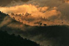 Les contreforts himalayens. Matthieu Ricard
