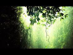 ▶ Relaxation Music - 1 Hour Gentle Rain Meditation - YouTube