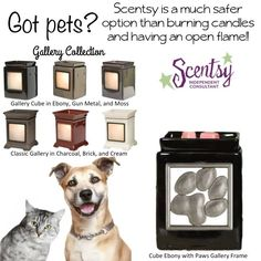 Love your 4 footed friends? SCENTSY Gallery Warmer with Paw Frame ~ ORDER ONLINE ~ SHIPS DIRECT https://spollreisz.scentsy.us