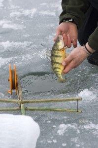 Winter Fishing in Michigan | Pure Michigan Blog