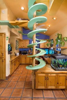 The cats get the option of taking the pole down or the spiral stairs: | A California Man Has Created A Cat's Dream Home