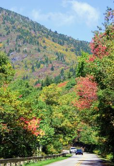 Fall color on the Blue Ridge Parkway near Mt Mitchell, Sept 30