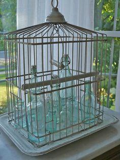 french bottl, bird cage, vintag birdcag