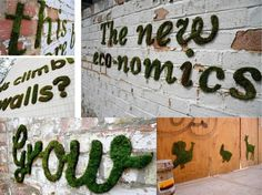 MOSS Graffiti recipie. Mix it all in a blender, paint it where ever you want, Spray it weekly and watch it grow!! WOW