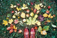 summer flowers, fall leaves, autumn leaves, photo poses, collag, nature photography, laina briedi, shoe, print