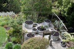 fenc, raised bed gardens, metal, bed designs, herbs garden