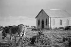 Donkey & the Church - Silverton, New South Wales - www.electronicswagman.com.au