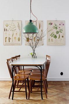 Botanical prints.