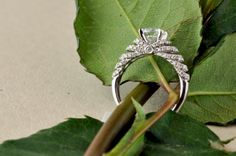 engag ring, engagement rings