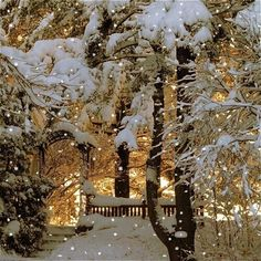 Snowy Christmas: I think that little twinkly lights make winter magical. Diamonds everywhere!
