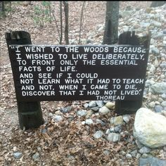 I cannot even explain what this means to me right now. Walden Pond   Concord, MA. There should be Thoreau quotes posted everywhere..