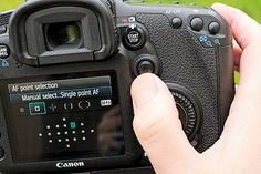 Which AF mode is best? Your camera's autofocus options explained | PhotoVenture camera autofocus